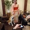 秋田犬はやちゃん、Voyagin初の犬ホスト業務完了!の画像