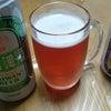 台湾ビールの画像