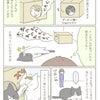 トンちゃんの巣の画像