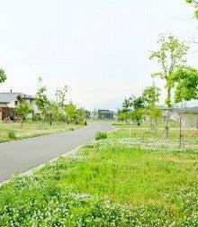 春風台A42街区
