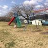二ツ井 桜づつみ公園で遊んできました♪の画像