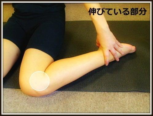 膝下O脚・XO脚の治し方|膝下O脚・膝のねじれ・膝窩筋矯正ストレッチ