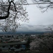 2016年・桜の開花…