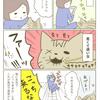 二代目実家猫トラちゃん[プレゼント]の画像