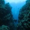 青の洞窟体験ダイビング&パラセーリングで遊びましょう!ご予約はテイクダイブまでの画像