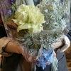 お花に聞いてみようの画像