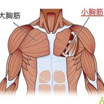 筋トレで第2のクーパー靭帯を作り上げる✨の記事に添付されている画像