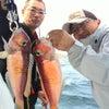 甘&真鯛の画像