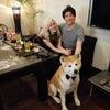 秋田犬はやちゃん、Voyagin 2度目の犬ホスト業務完了!の画像