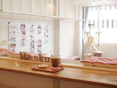 「にゃんくる」桜木町店カフェエリア