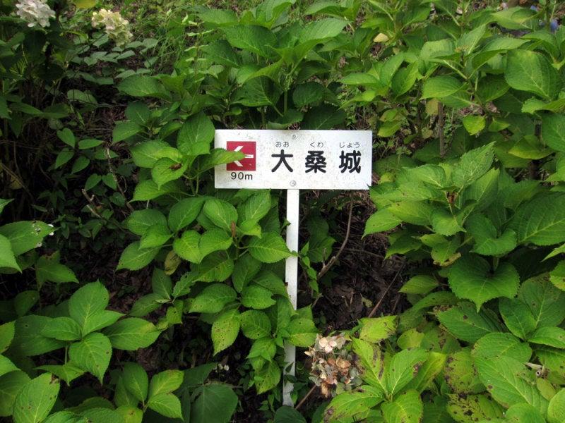 大桑城/愛知県豊田市 | なぽの...