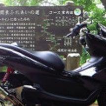 YZF-R25、SP…