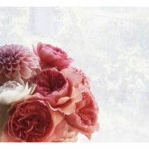 お花のチカラ♪
