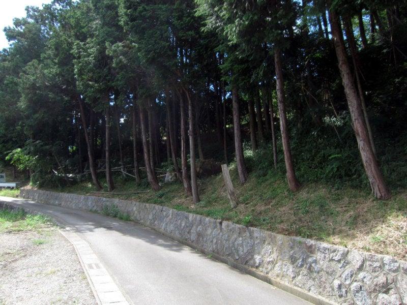 西尾寺部城②