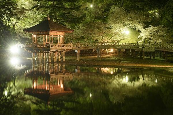 「浮見堂  桜」の画像検索結果