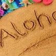 ハワイアン資格取得講…