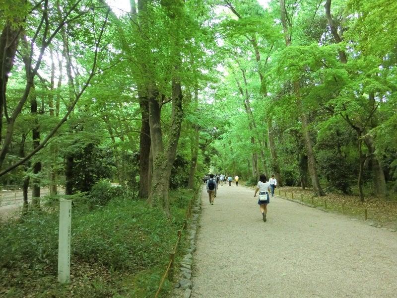 下賀茂神社①