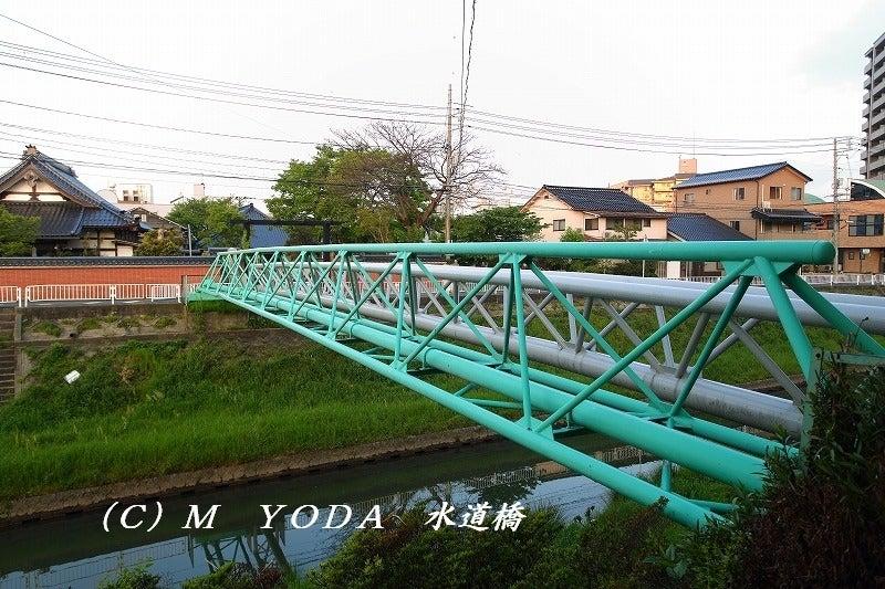 智頭橋(鳥取県鳥取市) | Bridge a day(Bさんの最近は)