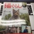猫ピタが、猫雑誌の「…