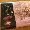 桜の香りの正体はの画像