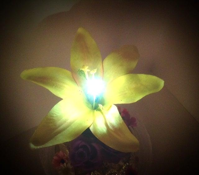 ラプンツェル 光る魔法の花って何の花 ディズニー大好きな方のための
