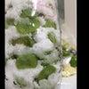 ☆梅の酵素シロップ☆の画像