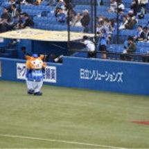 野球観戦(写真たくさ…