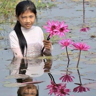 カンボジア人の笑顔と睡蓮の花 カンボジア田舎に咲いたお花 カンボジアガイドローズの記事に添付されている画像