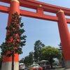 まきちゃん先生の冷えとり勉強会@京都の画像