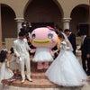 結婚披露宴に行ってきたよ!の画像