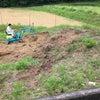 新しい畑のことの画像