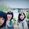 ぶらっと京都散歩の画像