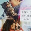 せか猫・・・せつなく静かに愛が胸にしみてくるの画像