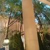 新浦安のホテルビュッフェの画像