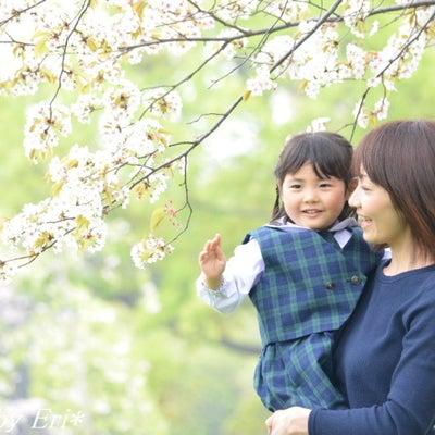 桜の撮影会☆2019ご予約受付開始♪の記事に添付されている画像
