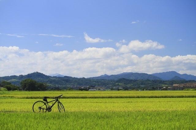 田園風景 画像