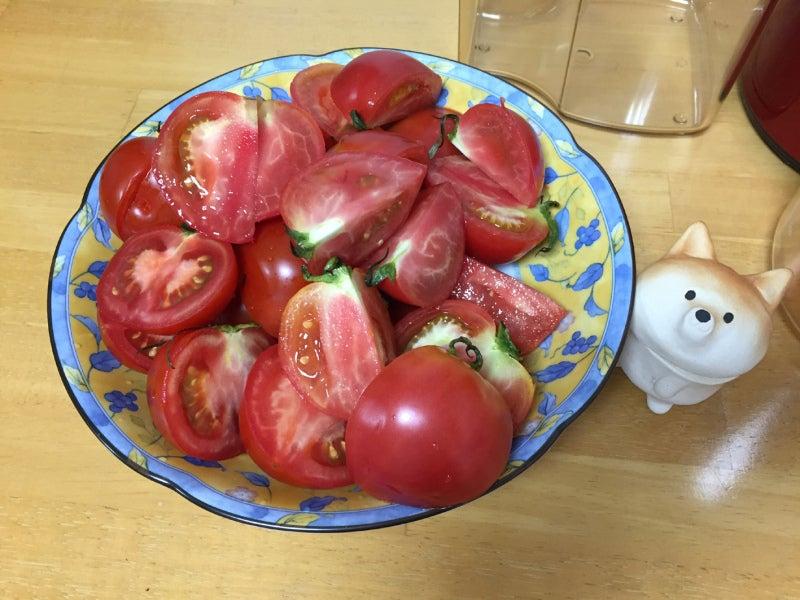 スロージューサートマトジュース