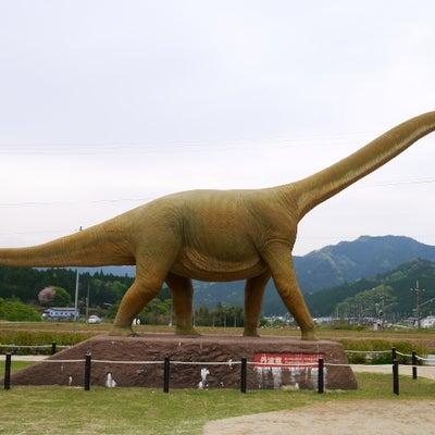 丹波恐竜公園 竜の里に寄りました。の記事に添付されている画像
