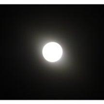月の悪戯...c