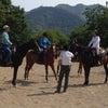 8.28 林流乗馬教室開催!の画像