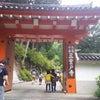 三室戸寺の紫陽花はもう少し先の様ですの画像