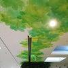 柏のモチーフの画像