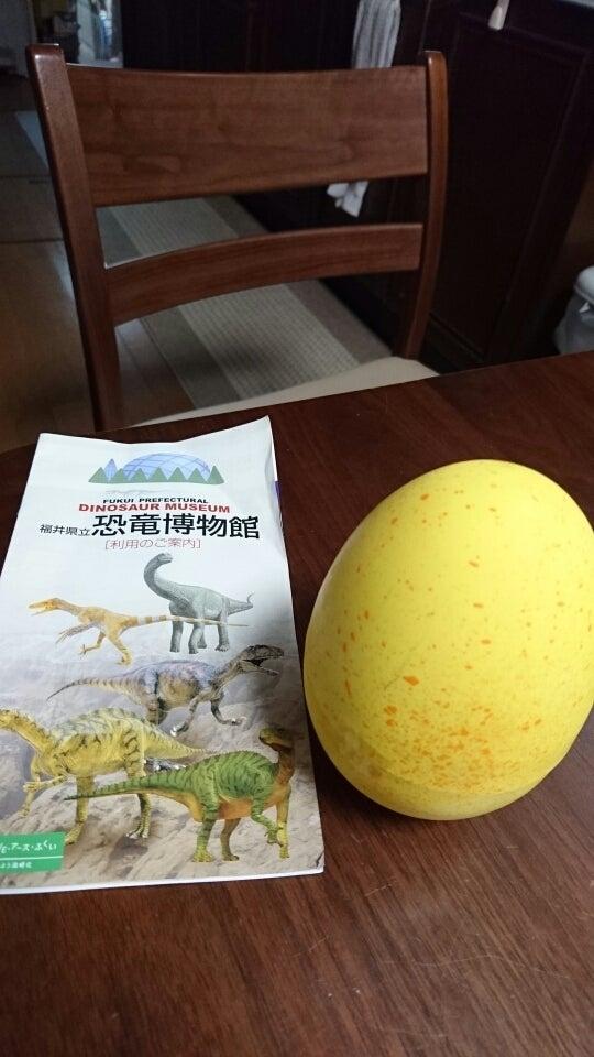 博物館 土産 恐竜 福井 お