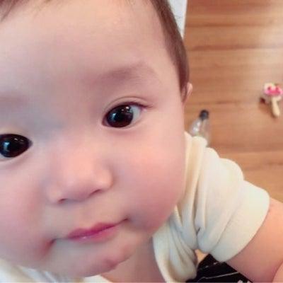 赤ちゃん 二重の記事に添付されている画像