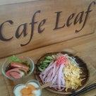 【カフェ リーフ】冷やし中華はじめました~♪の記事より
