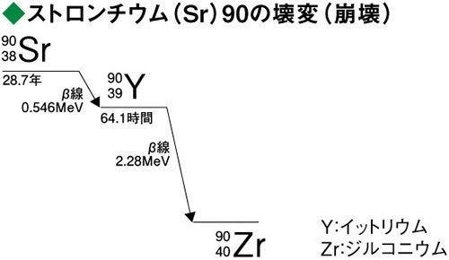 ストロンチウム90は… | Hime☆Kir...
