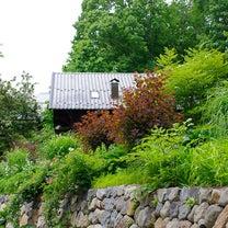 ポール・スミザーさんと行く萌木の村ナチュラルガーデンウォーク@萌木の村の記事に添付されている画像