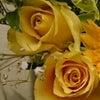 色とお花でわかる心の動きの画像