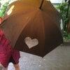 懐かしい〜ハートの傘!の画像