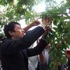 農業の視察・参院選の応援で山形県を訪問の画像